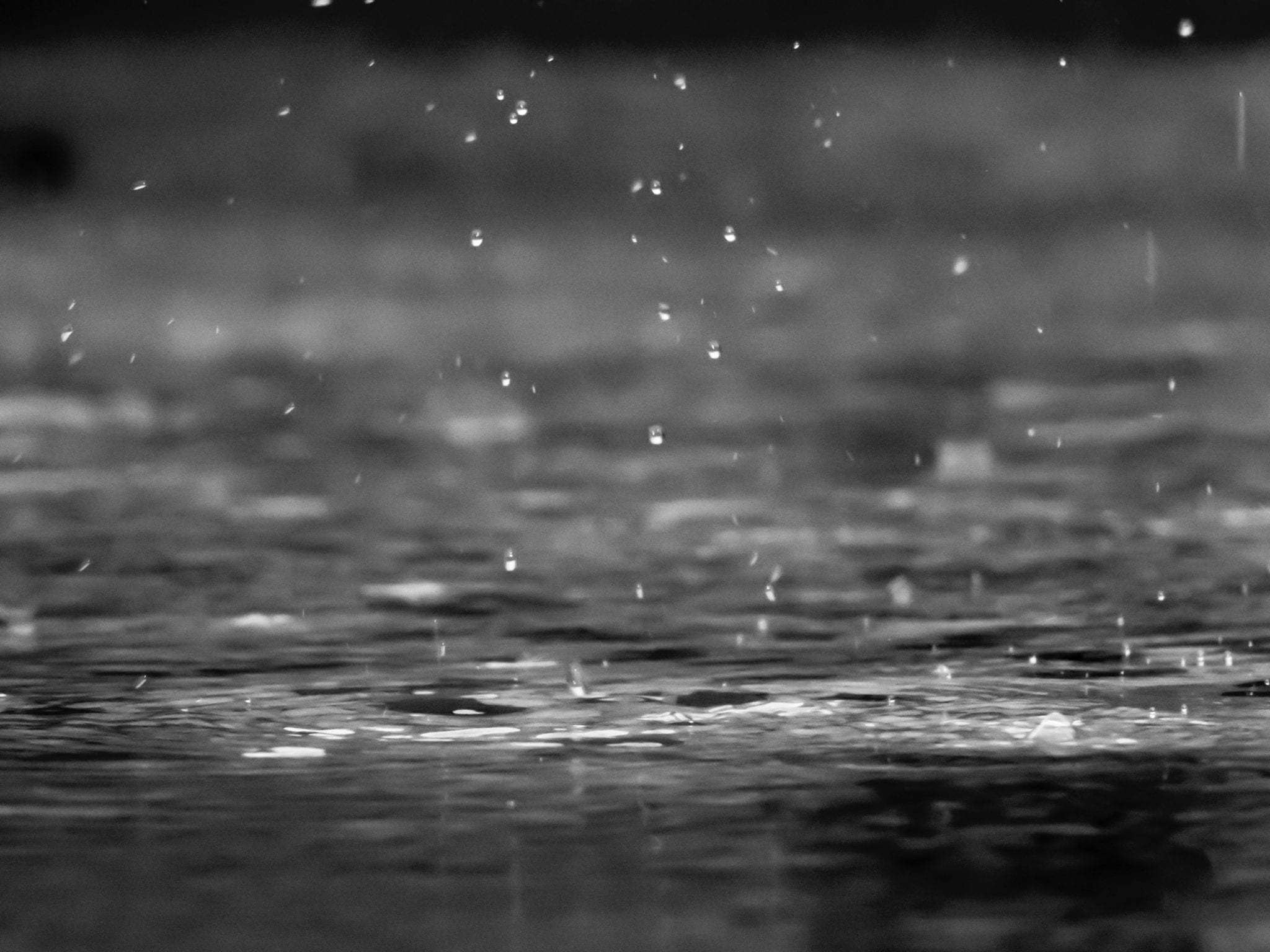 black and white picture of rain